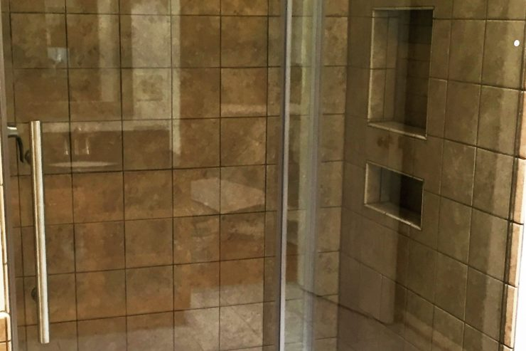 Glass Frame-less Shower Door with Tile and Niche